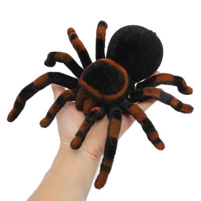 Tarantula na diaľkové ovládanie